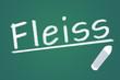 Fleiss  ##120912-005