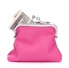 Purse with hundred dollar banknote