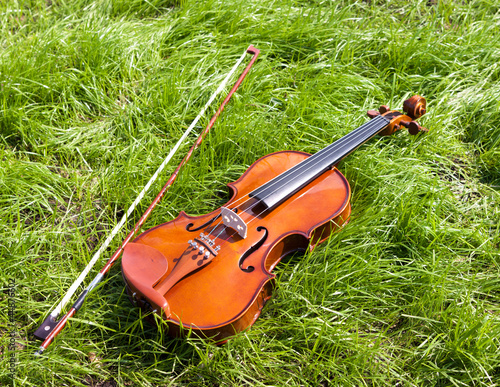 Violin on a green grass.