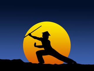 Practicing Kung Fu