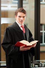 Anwalt mit Gesetzbuch
