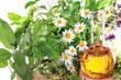 Homöopathie und Kochen mit Kräutern