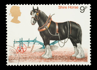 Mail stamp printed in the UK featuring a Shire Horse, circa 1978