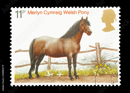 Mail stamp printed in the UK featuring a Welsh pony, circa 1978