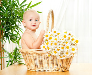 funny baby in a wicker basket with daisy flowers