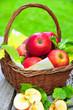 Körbchen mit knackig roten Äpfeln