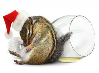 Funny drunk chipmunk dress santa hat with champagne glass