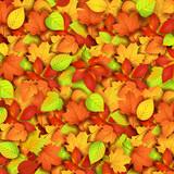 Fototapety Autumn leaves. Vector illustration