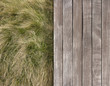 Deck and wild grass