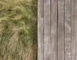 Deck and wild grass