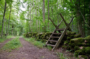 Stile at dirtroad in forest