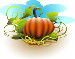 Halloween_Pumpkin_1