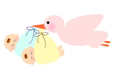 コウノトリ 双子 赤ちゃん