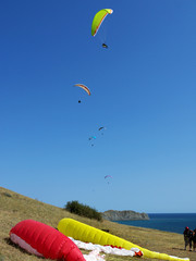 paragliders by the sea and in the blue sky