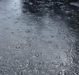 rain on a street