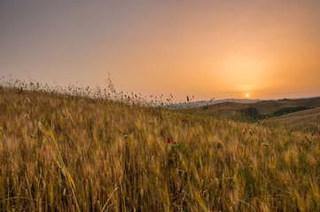 Early morning light  in the Tuscany region of Italy