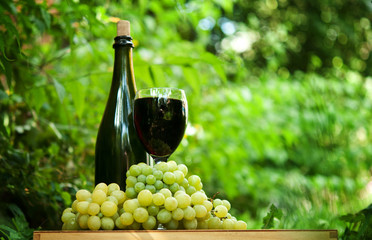 bottle of wine and fresh green grapes