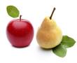 Roter Apfel und Birne