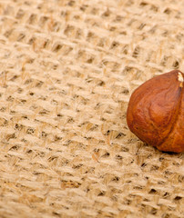 Hazelnuts on burlap background