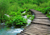 Fototapety Wooden path and waterfall in Plitvice National Park