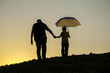 father and son walking in the sunset hand in hand with
