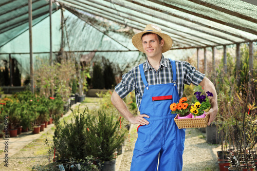 Young worker holding a basket full of flower pots in a hothouse