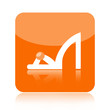 Woman shoe icon