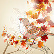 Vector Illustration of an Autumnal Background with Bird