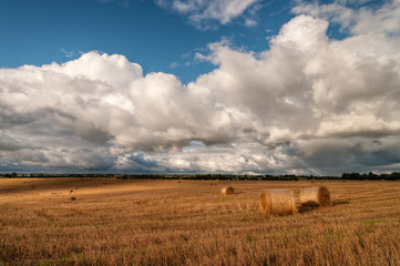 late summer rural landscape with hay rolls and clouds