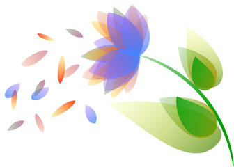 Colored flower and petals illustration