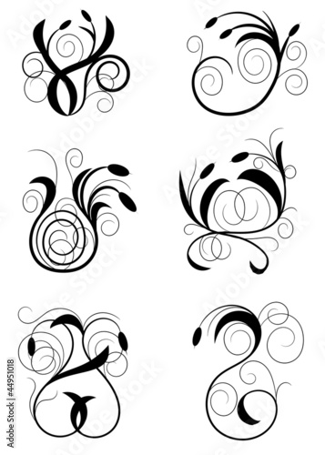 Illustration drawing of floral design elements