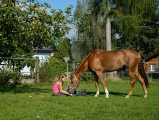 Obst für das Pferd