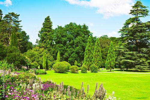 Fototapeta English garden