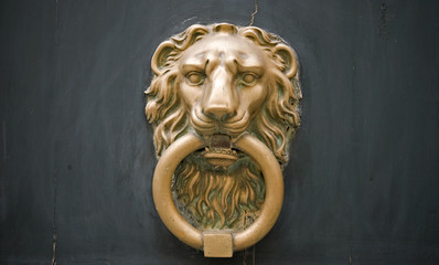bronze door knob Lion head