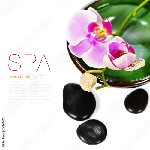Orchid Spa Composition