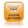 """Bouton Web """"AJOUTER AU PANIER"""" (commander commerce électronique)"""
