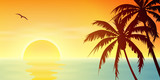 A Tropical Sunset, Sunrise with Palm Trees - 44964821