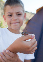Grasshopper sits on  boy's arm