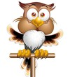 Happy Owl Cartoon Character-Gufo Felice-Vector