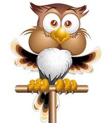 Happy Owl Cartoon Character-Gufo Felice-Vector