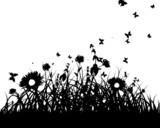 Fototapety meadow silhouettes