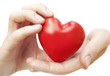 male hands holding with love red heart