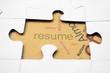 Resume puzzle concept