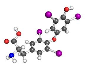 Thyroxine molecule