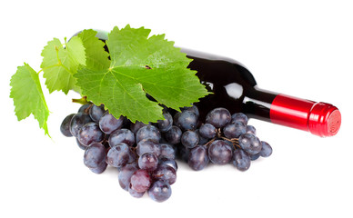 Grapes and red wine bottle isolated on white