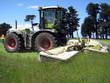 Grasmähen für die Tierfütterung