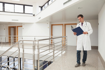 Doctor checking folder