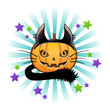 Halloween pumpkin Jack o lantern in black cat costume