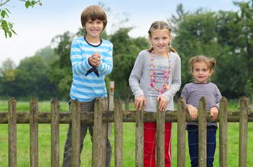 Kinder schauen über den Zaun