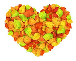 Big autumn heart. Vector